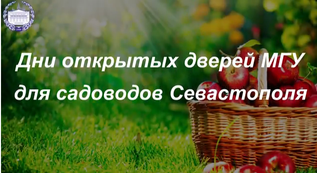 Форум МГУ семинар 3