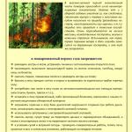 Пожарная безопасность (памятка) А5-1