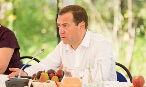 Медведев Сетевые