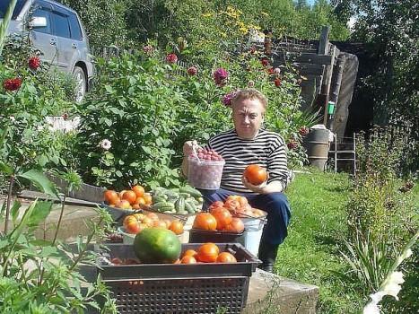 Урожай на даче 2