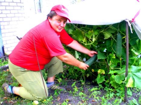 Урожай на даче 4