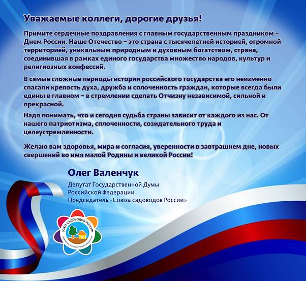 Валенчук День России